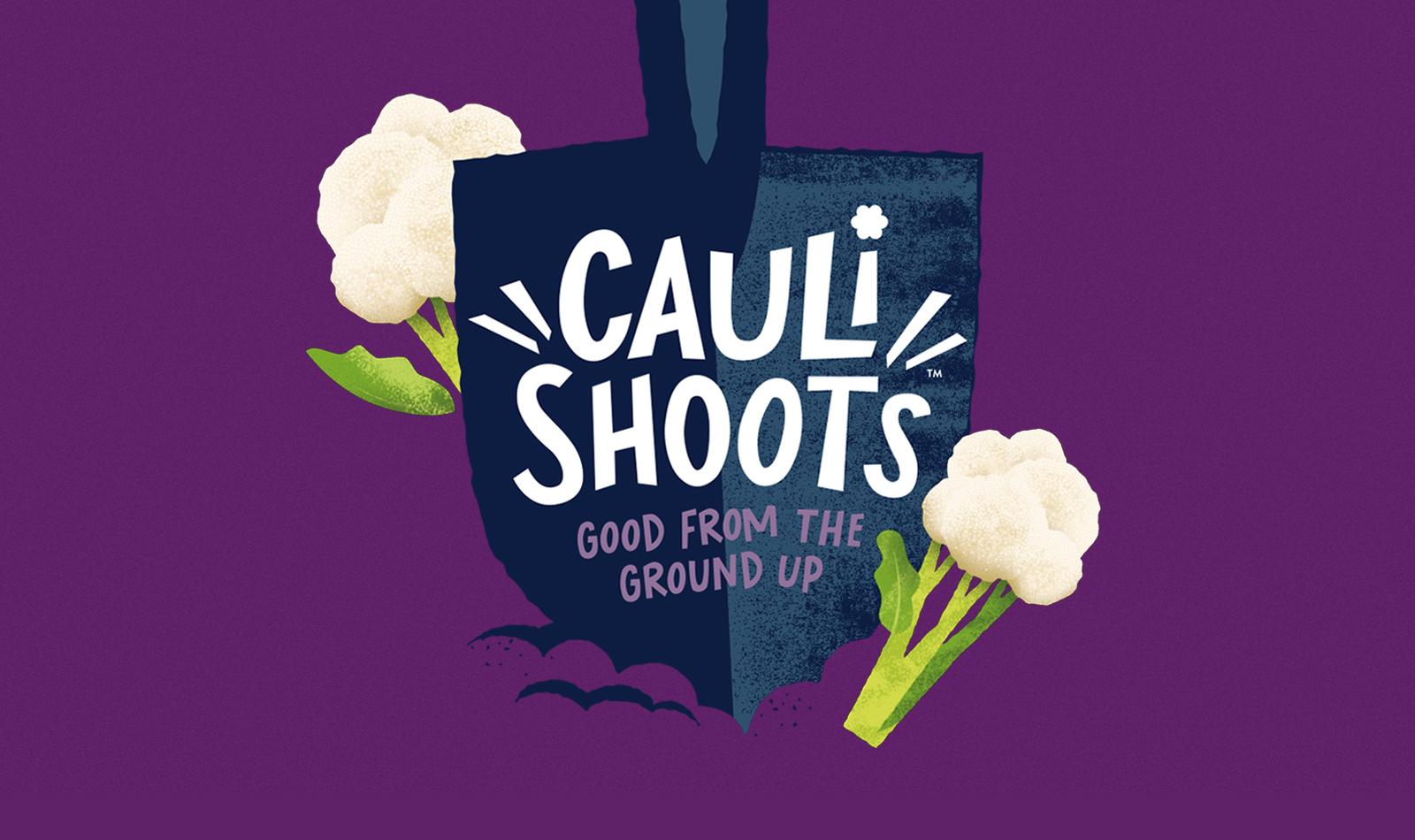 caulishoots logo on purple background