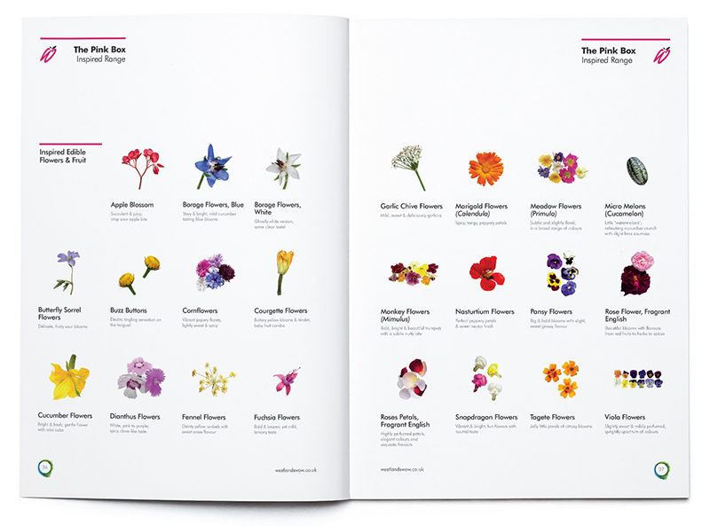 Westlands spreads flowers