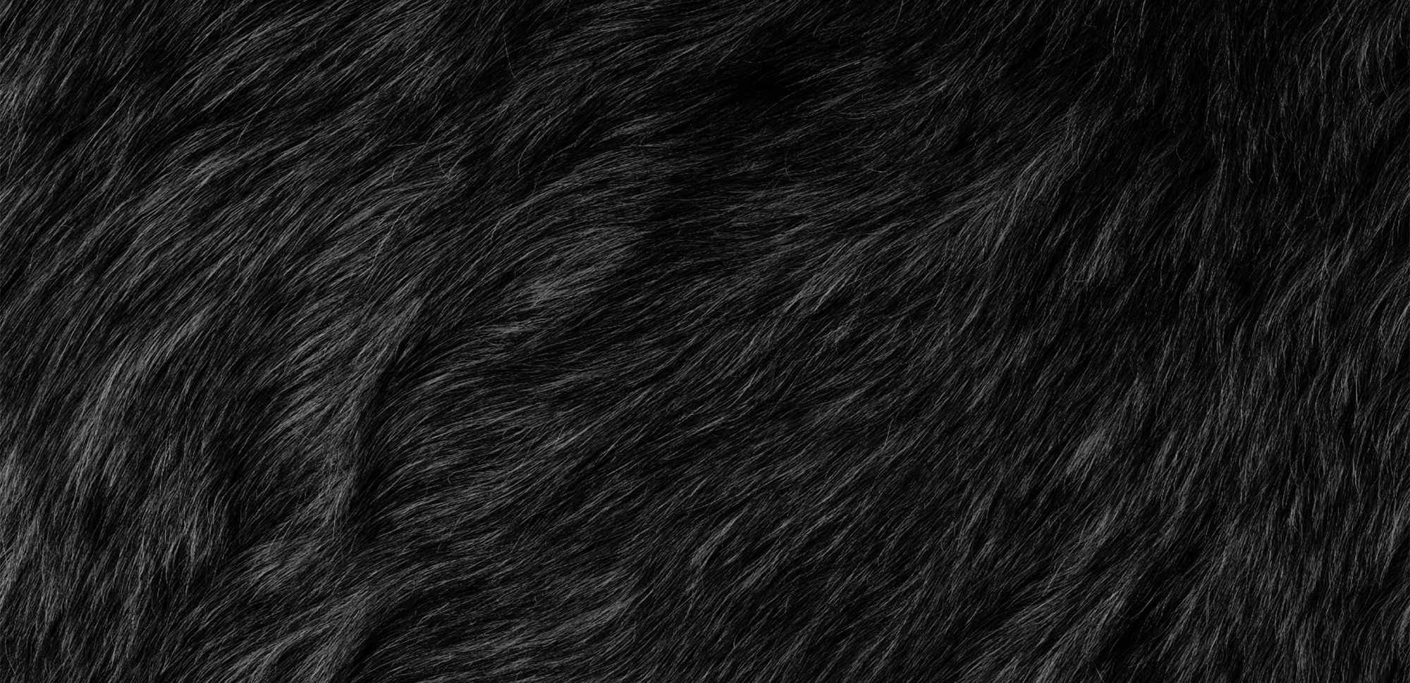 ape creative black fur